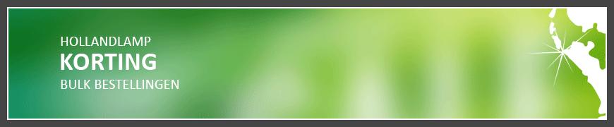 korting-bulk-bestelling-hollandlamp